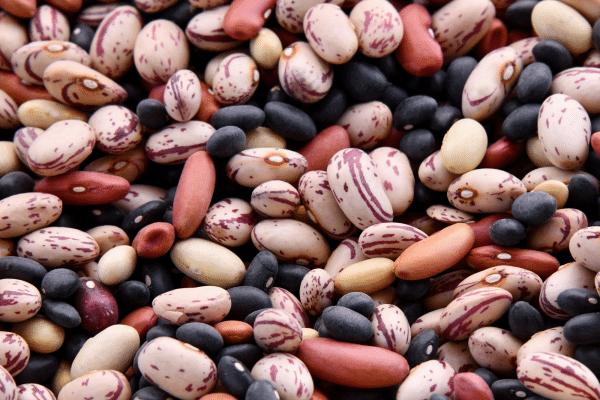 Athlete Shopping List Legumes