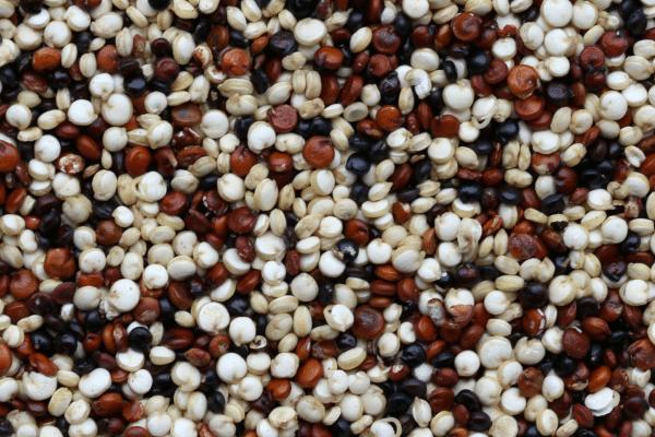 Athlete Shopping List Quinoa
